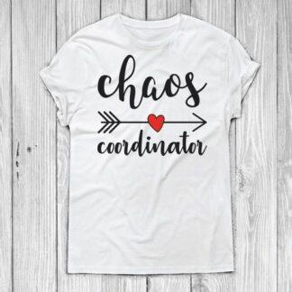 Chaos coordinator SVG