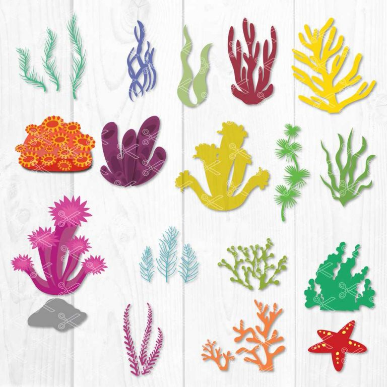 Seaweed SVG Cut File