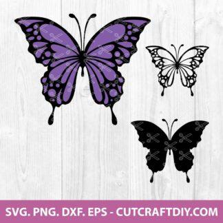 Butterfly SVG